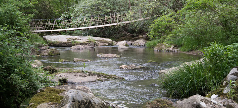 suspension footbridge over creek