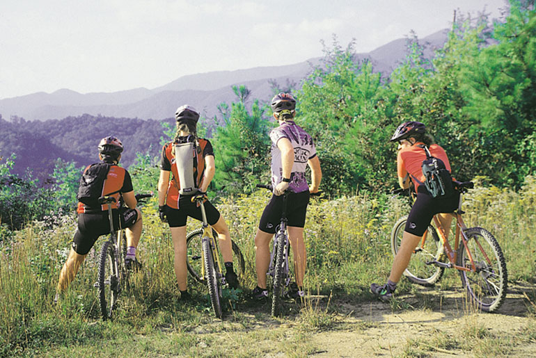 four bike riders on mountain top
